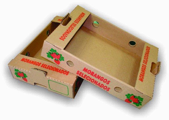 Dicas para Embalagem e Caixas de Morangos